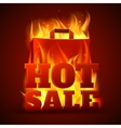 Hot sale fire banner vector image
