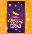 mardi gras carnival party poster background vector image