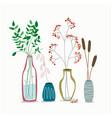 set minimalistic elegant glass vases with dried vector image