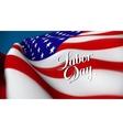 united sates america flag vector image