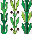 Vintage decorative set green floral pattern vector image vector image