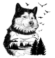 Wolf for your design wildlife concept vector image