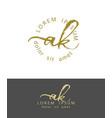 a k initials monogram logo design dry brush vector image vector image