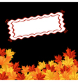 autumn falling leaves background with frame for se vector image vector image