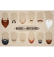 Beards and mustaches vector image vector image