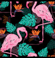 beautiful tropical seamless pattern vector image