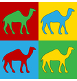 Pop art camel icons vector image vector image