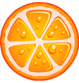 Slice of orange vector image vector image