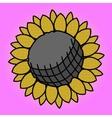 Sunflower Pop art vector image