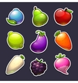 Beautiful fruits berries and vegetables stickers vector image