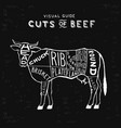 cuts of beef vector image vector image