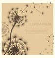 grunge background with dandelion flowers vector image