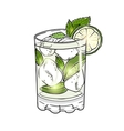 Hand drawn mojito cocktail isolated on white vector image vector image