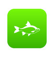 river fish icon digital green vector image