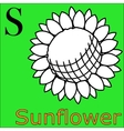 S letter alphabet Coloring book sunflower vector image vector image