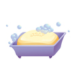 Soap and case vector image