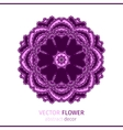 Abstract oriental lacy flower vector image