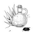 aloe vera juice in pitcher bottle hand drawn vector image