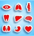 anatomical icons set vector image vector image