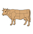 cartoon cow - cattle meat diagram vector image