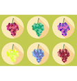 Grapes icon isolated on white background vector image