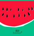 hello summer watermelon design for vacation season vector image