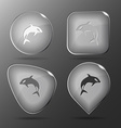 Killer whale Glass buttons vector image vector image