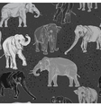 Seamless pattern with wild elephant vector image vector image