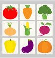 vegetable icon set tomato pepper carrot vector image