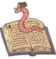 bookworm on open book vector image vector image