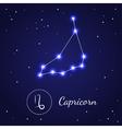 Capricorn Zodiac Sign Stars on the Cosmic Sky vector image vector image