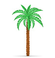 palm tree 02 vector image vector image