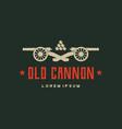 retro cannon vector image vector image