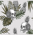 skull pineapple light background vector image