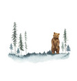 watercolor christmas card with bear vector image vector image