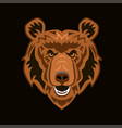 angry bear mascot for esport and gaming logo vector image vector image