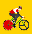 Cyclists and fixed gear bicycle vector image vector image