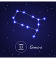 Gemini Zodiac Sign Stars on the Cosmic Sky vector image