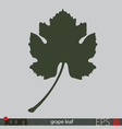 Grape Leaf Icon vector image vector image