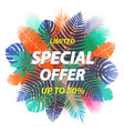 special offer label design for poster leaflet vector image vector image