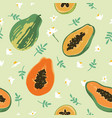 summer pattern with papaya leaves and flowers vector image