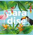 slogan paradise toucan flamingo tropical leaves vector image vector image