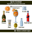 spritz cocktail infographic set of isolated vector image vector image