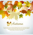 autumn mushroom leaves background vector image vector image