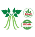 Bean vector image vector image