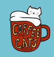 coffee and cats please cat in red coffee cup vector image vector image