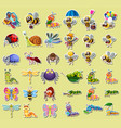 set insect sticker vector image