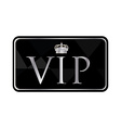 Silver vip pass vector image vector image