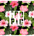 Tropical Palm Tropical Flowers Exotic floral vector image vector image