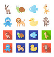 an unrealistic cartoonflat animal icons in set vector image vector image